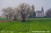 Fotogeniek Vlaanderen Haspengouw