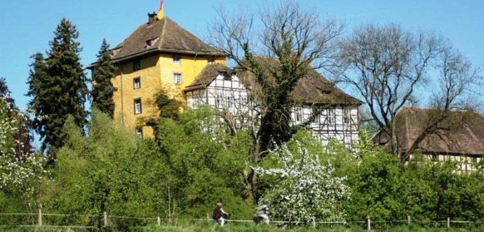 Voorjaarstip: fietsen door het Teutoburgerwoud