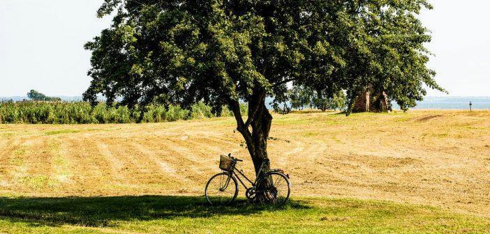 7 praktische tips: lekker fietsen bij warmte