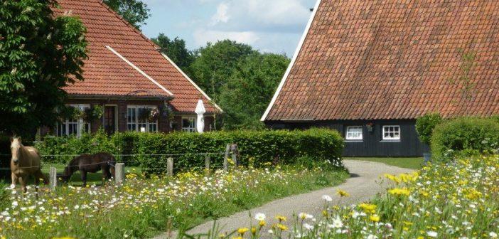 Fietsen bij Diepenheim: Gastenboerderij De Ziel