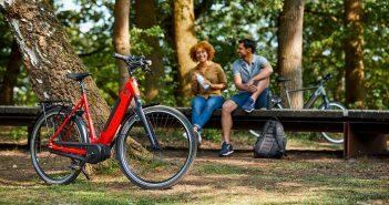 e-bike accu