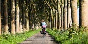 fietszadel kopen