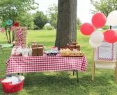 Lekker: picknicken met je zelfgeplukte weilandoogst